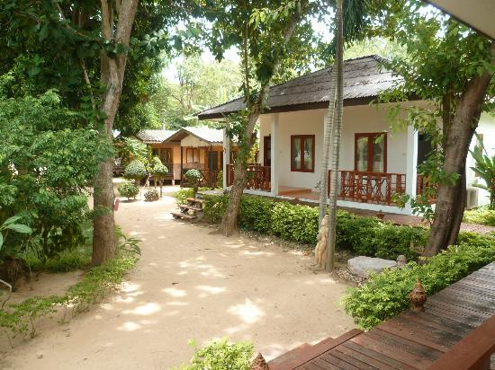The Cottage Samui : bungalow