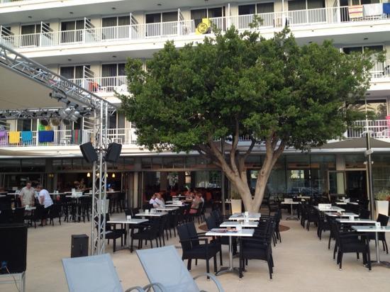 Hotel JS Sol de Alcudia: Entertainment area
