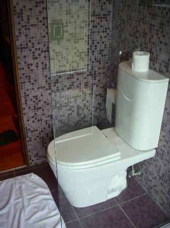 Entre Cielos: Toilet. Castaña room.