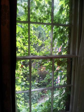 Mercure Salisbury White Hart Hotel : Bedroom sash window covered with ivy making the room very dark