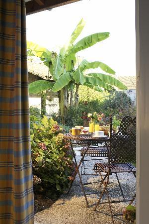 Hotel Continental : Vue des chambres du jardin.