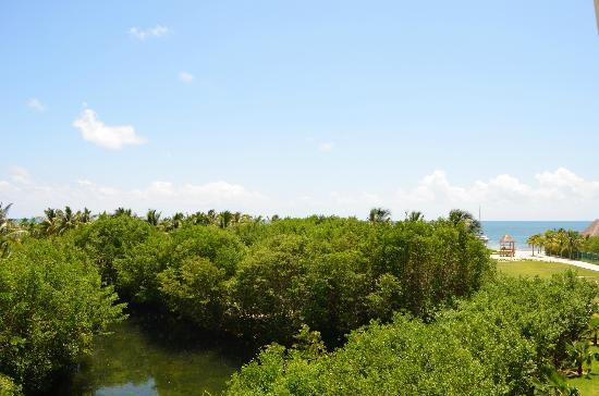 Hacienda Tres Ríos: Vista desde habitaciòn