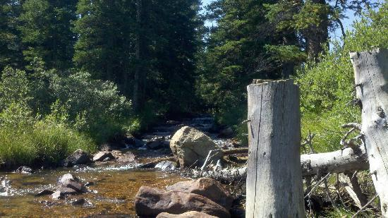 Arapaho National Forest: Roadside, Again...Beautiful!