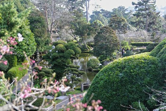 Japanese Tea Garden San Francisco Picture Of Japanese