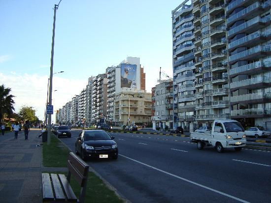 Pocitos Plaza Hotel: Bairro de Pocitos