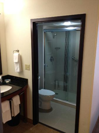 Hyatt Place Busch Gardens: Shower/toilet