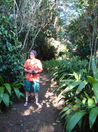 Finca Rosa Blanca Coffee Plantation Resort: tropical garden preserves