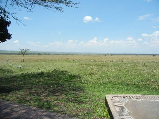andBeyond Kichwa Tembo Tented Camp: view from the restaurant looking out at the Mara