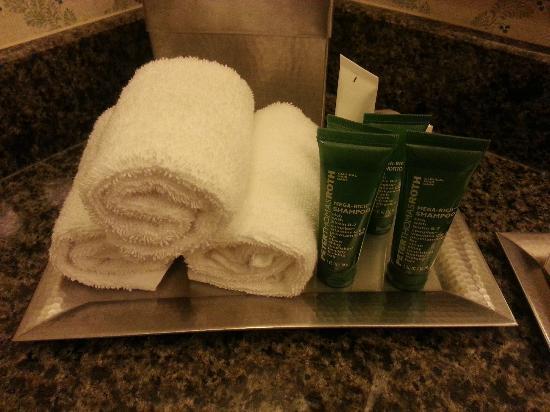 هيلتون سانت لويس آت ذا بولبارك: Bathroom amenities 