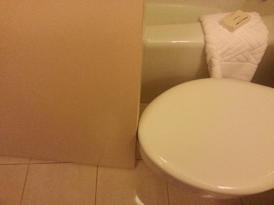هيلتون سانت لويس آت ذا بولبارك: The bathroom door actually hit the toilet seat cover when you opened or closed the door. 