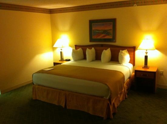 Baymont Inn & Suites Conroe/The Woodlands: comfortable king size bed