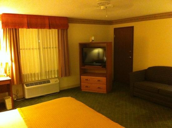 Baymont Inn & Suites Conroe/The Woodlands: nice television area