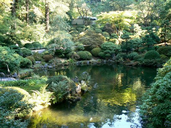 One Of The Pools In The Garden Picture Of Portland Japanese Garden Portland Tripadvisor