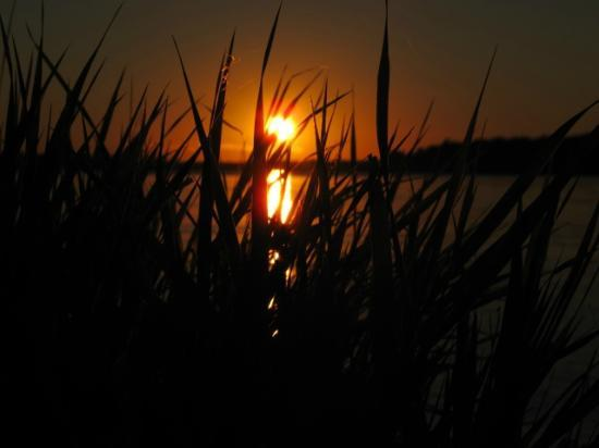 Robert Moses State Park: Sunset over St. Lawrence