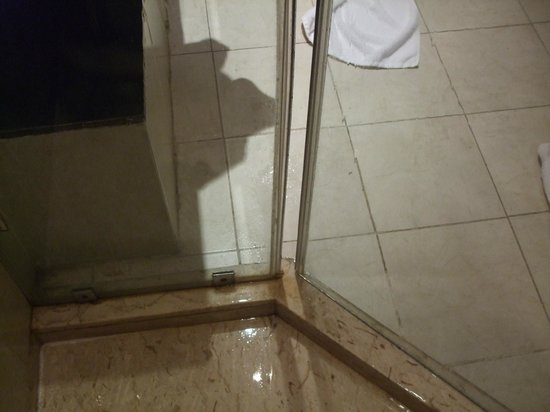 Radisson Blu Hotel, Alexandria: Shower door doesnt close flush ...