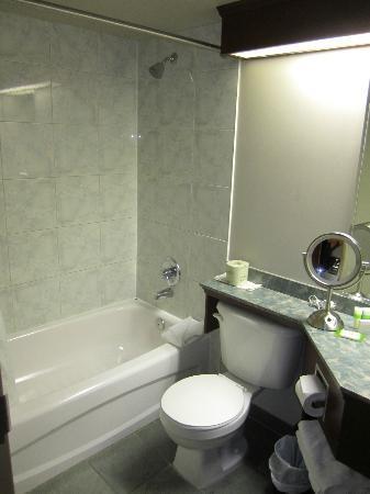Hotel Dauphin Montreal - Longueuil: Bathroom