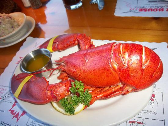 Cooku0027s Lobster U0026 Ale House: Lobster From Cooku0027s