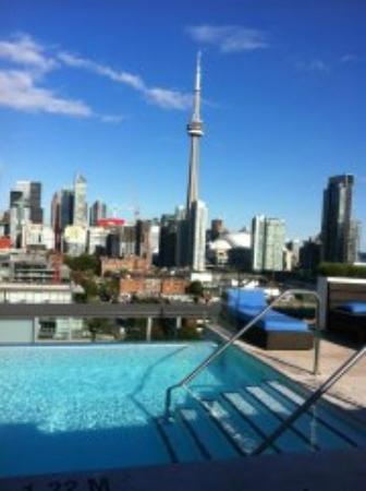 Thompson Toronto - A Thompson Hotel: A most compelling view with a beautiful edgeless pool/rooftop bar.