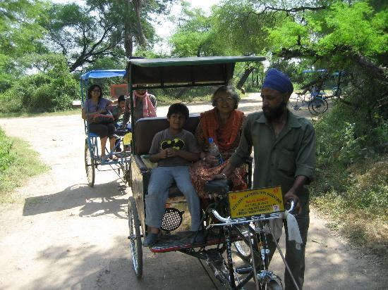 Keoladeo National Park: go by cycle rickshaw who will also tell you stories