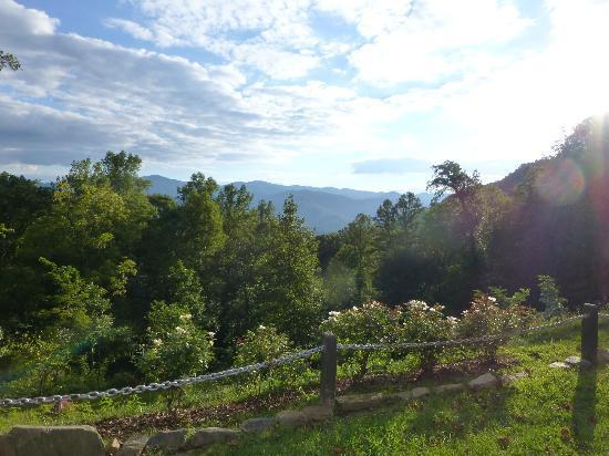 توكاسيجي ريفر ماونتن لودج: Mountain view from the flower garden 
