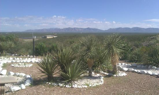 Landmark Lookout Lodge: Our View of Tombstone