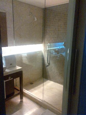 The Westin Santa Fe Mexico City: Shower