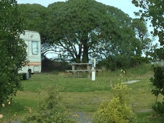 Kaikoura Peketa Beach Holiday Park : camping ground