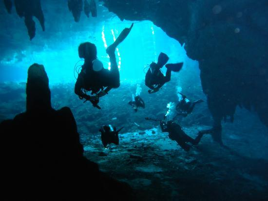 Yucatek Divers: Gran Cenote-Beautiful