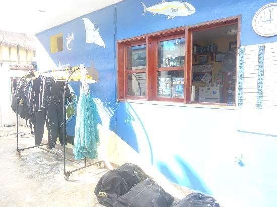 Yucatek Divers-Dive Shop