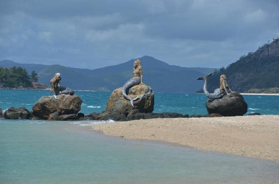 Best Deal Daydream Island