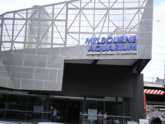 Sea Life Melbourne Aquarium : Melbourne Aquarium