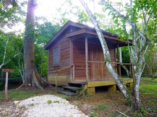 The Trek Stop: Cabin #6