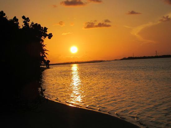 Sun Island Resort: Sunrise