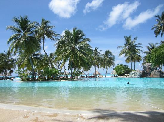 Sun Island Resort and Spa : Pool with beach in rear