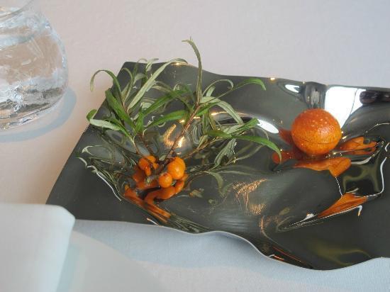 Geranium: nibbles-carrot&seabuckthorn