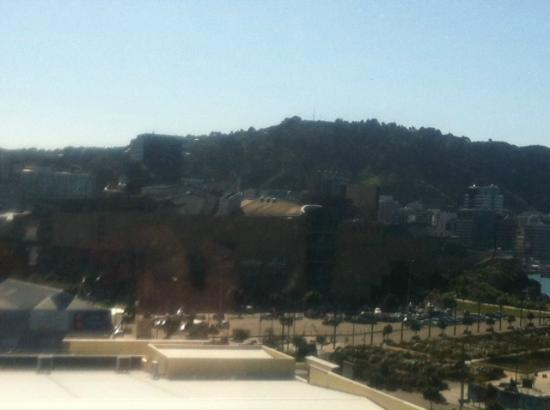 Bay Plaza Hotel : te papa from room