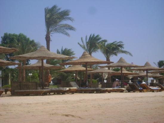 埃及夏姆錫克諾富特飯店照片