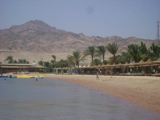 Hotel Novotel Sharm El Sheikh: beach