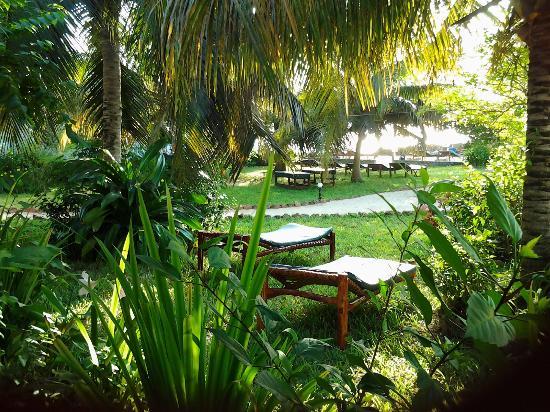 فليم تري كوتدجيز: Flame tree hotels park 