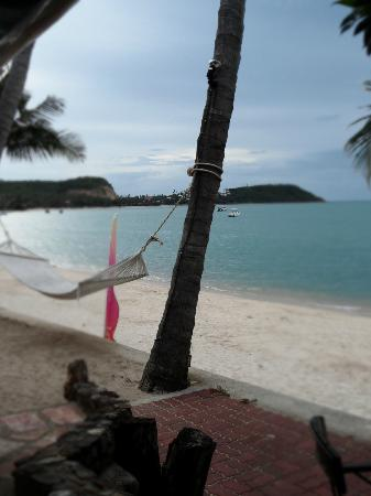 Secret Garden Beach Resort: View from patio.