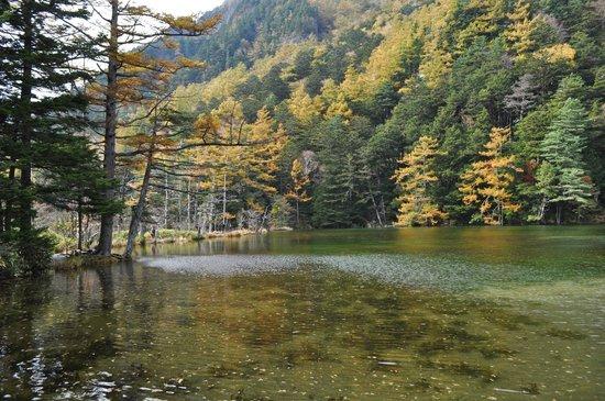 Myojin Pond: 明神一之池