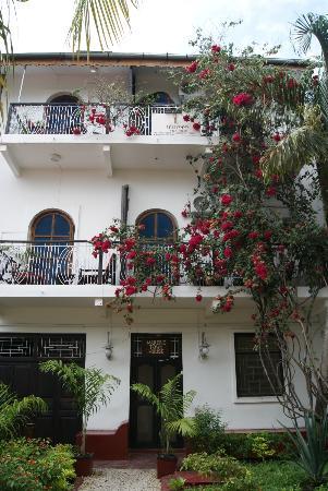 Warere Town House: Puerta principal y balcones