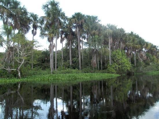 Boral Camp: Landschaft
