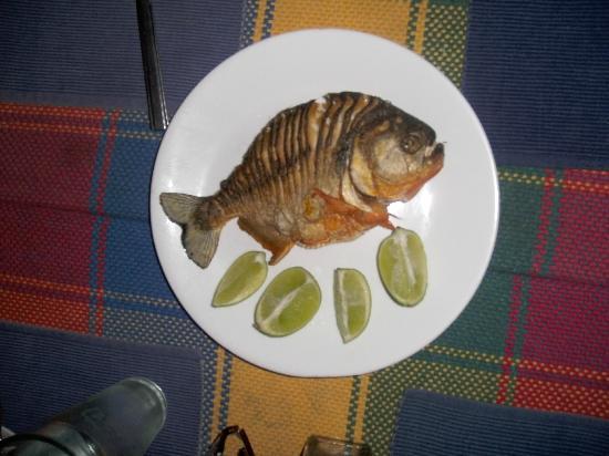 Boral Camp: zubereiteter Piranha