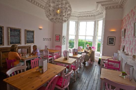 Room 1 Picture Of Jessie S Kitchen Dundee Tripadvisor