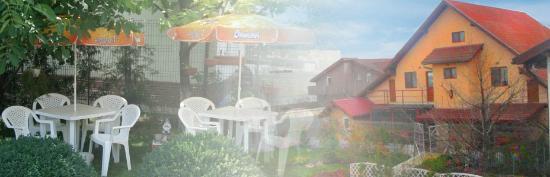 VillaVerde Hotel: VillaVerde backyard