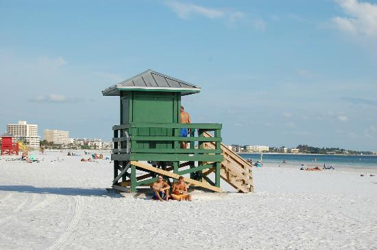 Siesta Beach: Siesta Key Public Beach - beautiful.