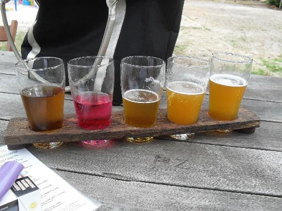 Bush Shack Brewery: have a bit of everything!
