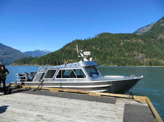 Campbell River Whale Watching and Adventure Tours: High speed transport