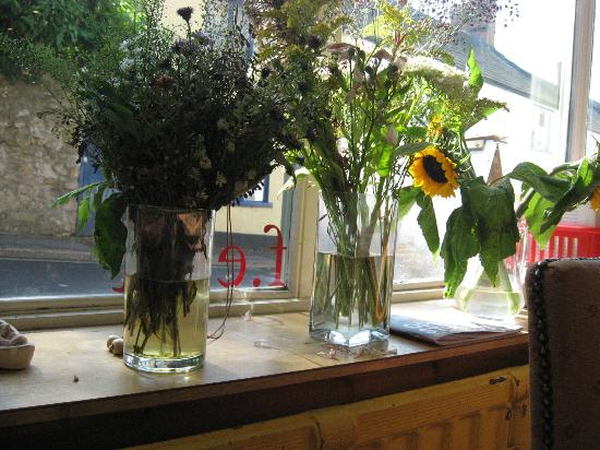 F.east: Sunny windowsill